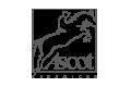 logo-ascot